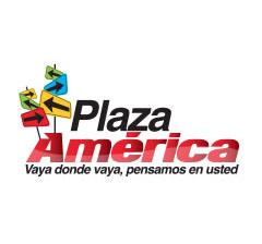 metas-publicidad-_0007_Logo-PAM